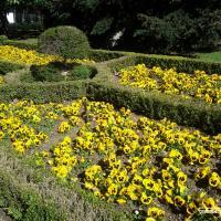 Весна в Европе: вертикальный сад в Мадриде