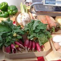 Органические продукты, беларусский чай и этномузыка: чем удивлял гостей юбилейный Агрокультурный фест?