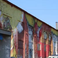 Фестиваль урбан-арта «Vulica Brasil-2016»: красота беларусской природы — в граффити бразильских художников