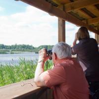 Птицы в объективе. На Саковщинском водохранилище появилась безбарьерная площадка для бёрдвотчинга