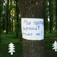 Борьба за Котовку опять в разгаре: в сквере может начаться вырубка