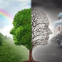 Объявлен набор слушателей на онлайн курс по международному экологическому праву