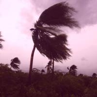 Пад ударам стыхіі: Фларыда пакутуе ад урагану, Мексіка адыходзіць пасля землятрусу, Італія змагаецца з павадкамі