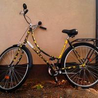 «Добры Ровар» отменяет осень и продлевает работу бесплатного велопроката