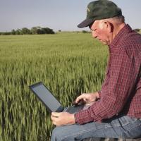 Органическое фермерское хозяйство в Беларуси: как начать и остаться с прибылью?