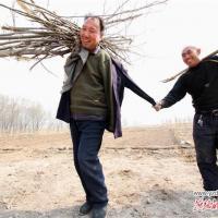 Слепой помогает безрукому: два друга-инвалида из Китая посадили 10 тысяч деревьев (фото)