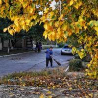 «Чистый город не вдруг становится чистым». Муниципальные власти рассказали, как будут облагораживать Минск