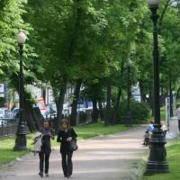 Молодёжный «зелёный» патруль появится в Москве