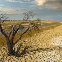 Выбросы CO2 превысили критический уровень, последствия ударят по человечеству к 2050 году