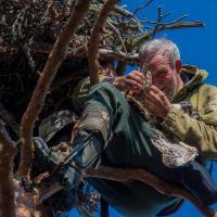 Орнитолог Владимир Ивановский: «Если я был бы беркутом, где бы я загнездился?»