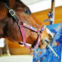 Конь-художник из США заработал на картинах больше, чем Ван Гог при жизни