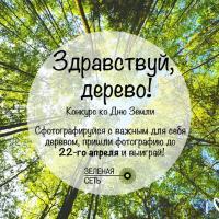 Зелёный портал объявляет конкурс «Здравствуй, дерево!»