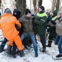 У деревьев появился шанс: вырубка в Котовке приостановлена