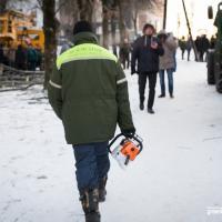 Дайджэст мінскіх высечак дрэваў за 2016 год: дзе ў сталіцы гучала бензапіла