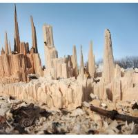 Ментальные деревья-города, или Как художник может предупредить время