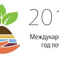 2015 - международный год почв