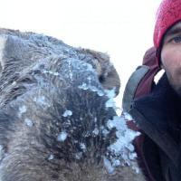 Рыбак спас лосёнка и пообещал больше никогда не охотиться на крупную дичь