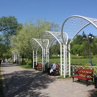5 июня в Лошицком парке устраивают масштабный детский праздник, посвящённый Всемирному дню окружающей среды