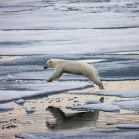 Премьер России Медведев расширил границы «Русской Арктики»