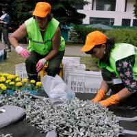 Работники «Зеленстроя» сразились за звание лучшего озеленителя