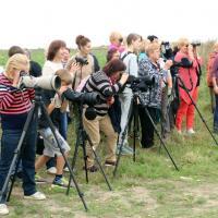Крутой бесплатный фестиваль в Миорах «Жураўлі і журавіны»: надо ехать, бинокль выдадут на месте!