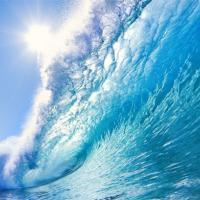 Специалисты посчитали стоимость ресурсов Мирового океана