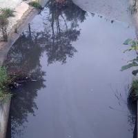Прокуратура Могилевского района возбудила уголовное дело по факту загрязнения поверхностных вод
