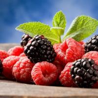 Шпаргалка для дачников: как получить богатый урожай органической малины и ежевики? (+ список лучших сортов)