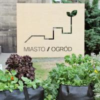«Город и сад»: в центре Варшавы открылся проект, демонстрирующий дружелюбную городскую среду