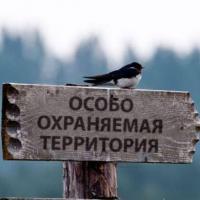 Пособие по использованию прав в области охраны окружающей среды