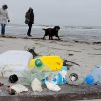 Как два немецких острова уже два года живут без пластика