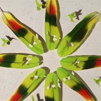 Экология и искусство: удивительные картины из птичьих перьев (фото, видео)