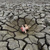 Войну в Сирии спровоцировало глобальное потепление