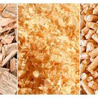 В Бресте открывают производство биотоплива из древесных отходов и старой мебели