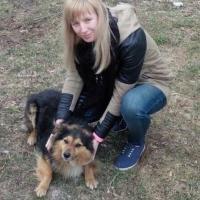 За Малыша и Жорика. Жителю Пинского района грозит год лишения свободы за расстрел двух собак