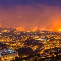 Португалия в огне: в лесных пожарах винят некомпетентных чиновников