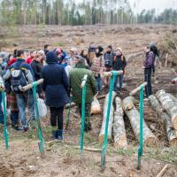 Взамен поваленного ураганом: в Узденском районе волонтёры посадили целый лес