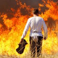 Поучительный тест: нужно ли и можно ли палить траву весной?