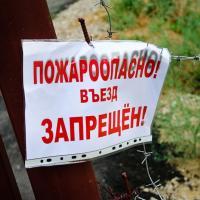 Посещение лесов запрещено в некоторых регионах Беларуси