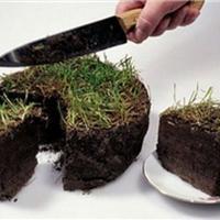 Раздача земли взамен на возможные инвестиции