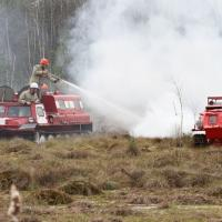 Лесхозы готовятся к лесным пожарам: авиация, вездеходы, наблюдательные вышки