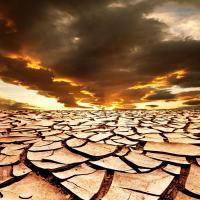Когда земля уходит из-под ног: ООН провозгласила 2015 Международным годом почв