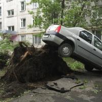 Адаптацыя да змяненняў клімату непазбежна: пасля Масквы ахвярай стыхіі стаў Берлін