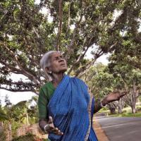 105-летняя женщина из Индии стала мамой для 300 деревьев