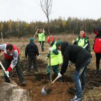 Городской Лесничий раскритиковал отчёты «Минскзеленстроя» по озеленению столицы