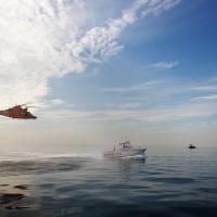 ООН предложила сделать заповедными зонами 10% морей до 2020 года