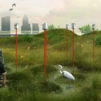 Искусственные болота защитят мегаполисы от наводнений