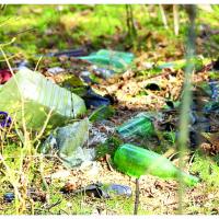 Зелёная сеть и МВО приглашают на покатушку по поиску и фиксации несанкционированных свалок
