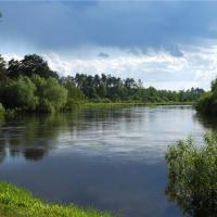 В Гомельской области 80% рек арендовано. Будет ли среди них Сож?