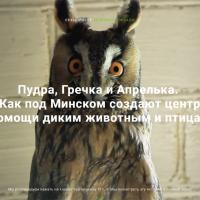 Мультимедийный спецпроект: Как под Минском создают центр помощи диким животным и птицам